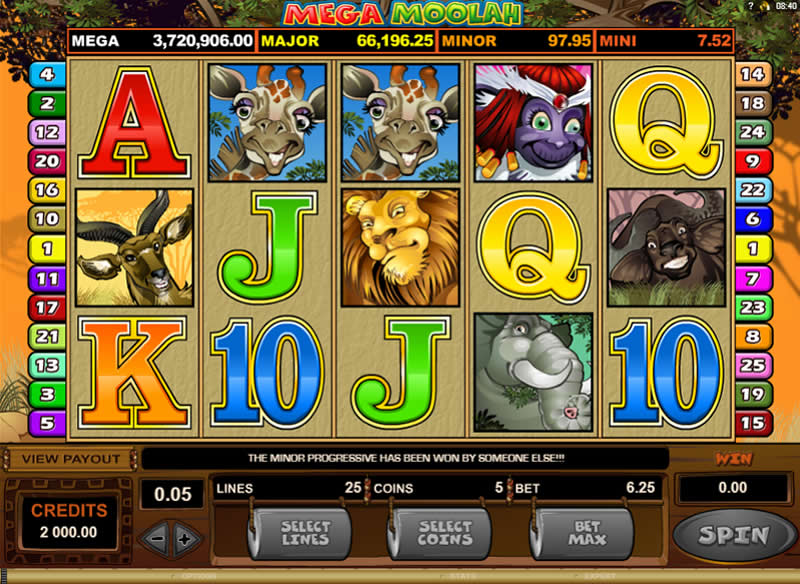 The Mega Moolah slot, a 25-payline progressive slot running on the Microgaming software platform.