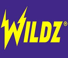 Wildz.com has Interac method payment method for players who use it