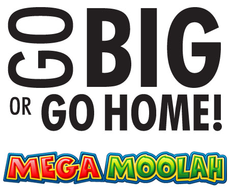Go big or go home - Thinking big with the Mega Moolah slot